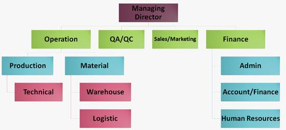 organization-chart6